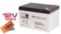 Batería plomo-ácido 12V 12A